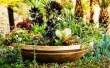 ไอเดียตกแต่งสวน เพิ่มความสดชื่นรื่นรมย์ให้กับบ้านของคุณ