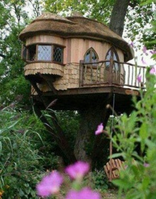 บ้านต้นไม้ น่าอยู่ ทำตามได้จริง