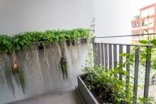 Green Terrace มุมสีเขียว นั่งเล่นข้างบ้าน