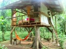 กระท่อมบนต้นไม้ เรียบง่ายประหยัดงบ พื้นที่พักผ่อนสุดชิลล์กลางสวน
