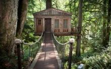 แบบบ้านต้นไม้ ออกแบบเป็นกระท่อมทรงหลังคาหน้าจั่ว ดูน่ารักเป็นธรรมชาติ